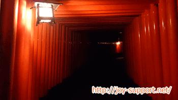 伏見稲荷大社の千本鳥居のライトアップ