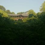 東福寺まとめ!観光のポイントから交通情報まで網羅!