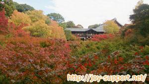 東福寺へのアクセス途中の臥雲橋からの景色